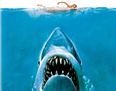 Jaws and the Freight Market for Shippers